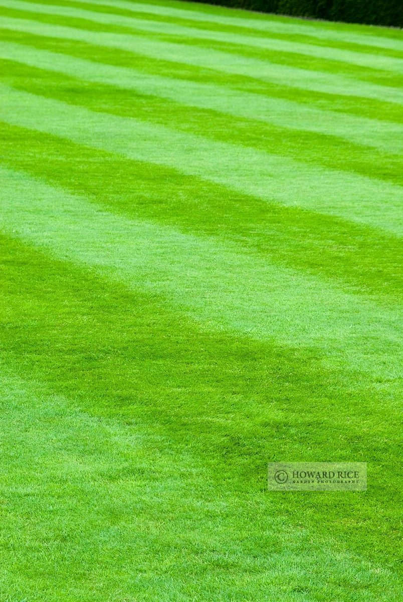 Perfect lawn mown with stripes