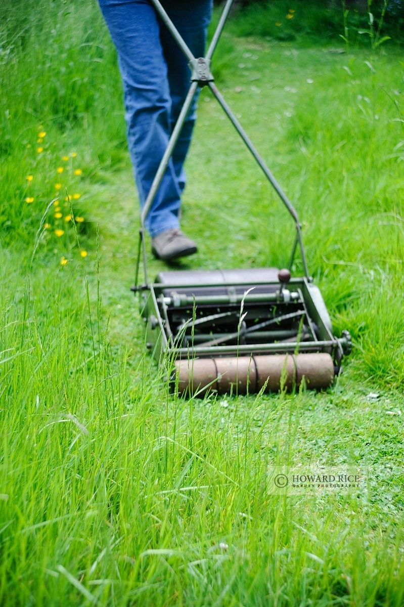 Mowing a grass path through long grass with a hand cylinder mower