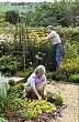 Couple working in garden, August, Cerne Abbas Dorset