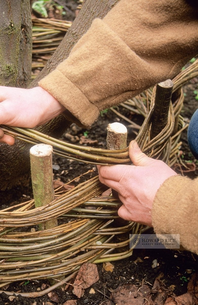 weaving willow stems around hazel uprights to form a turf seat